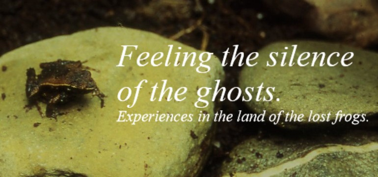 Feeling the silence of the ghosts. Experiences in the lands of lost frogs.