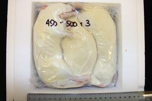 XXXL Jumbo Rats (3 x 450-500g)