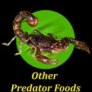 other-predator-foods
