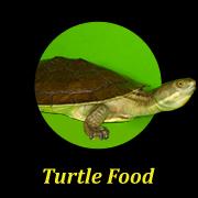 turtle-food