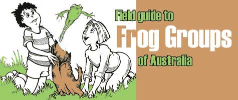 Field Guide to Frogs Groups of Australia